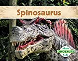 Spinosaurus: Picture books for children