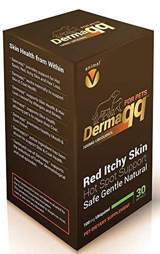 Dermaqq Best Absorption Ubiquinol - CoQ10 for Dogs and Cats Hot Spots, Hair Loss, Dermatitis Support (2 Boxes - 100MG softgels)