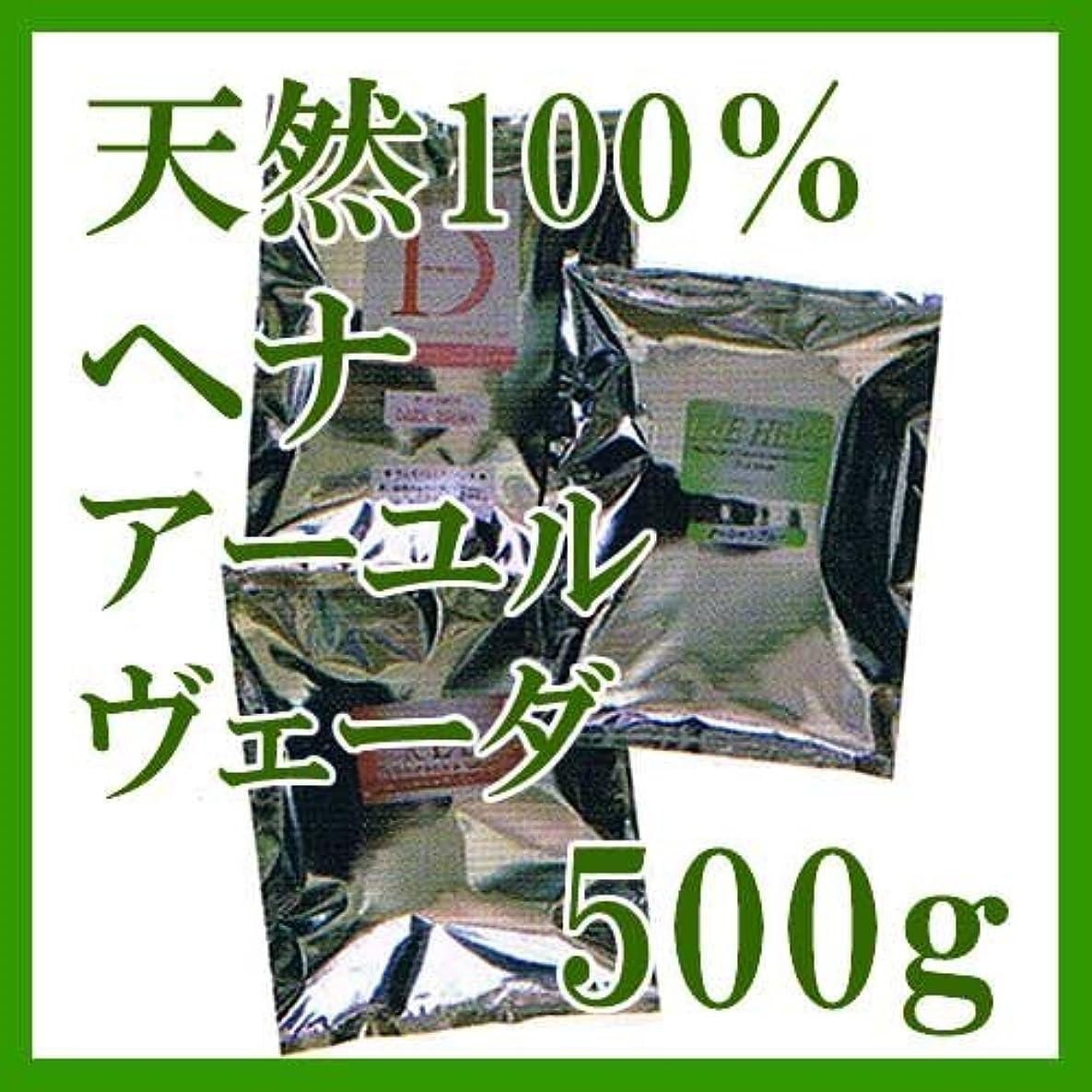 白雪姫知覚的不愉快にヘナ インターナショナル 天然100%ヘナ アーユルヴェーダ 500g