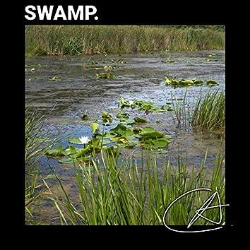 Best Nature Swamp Sounds