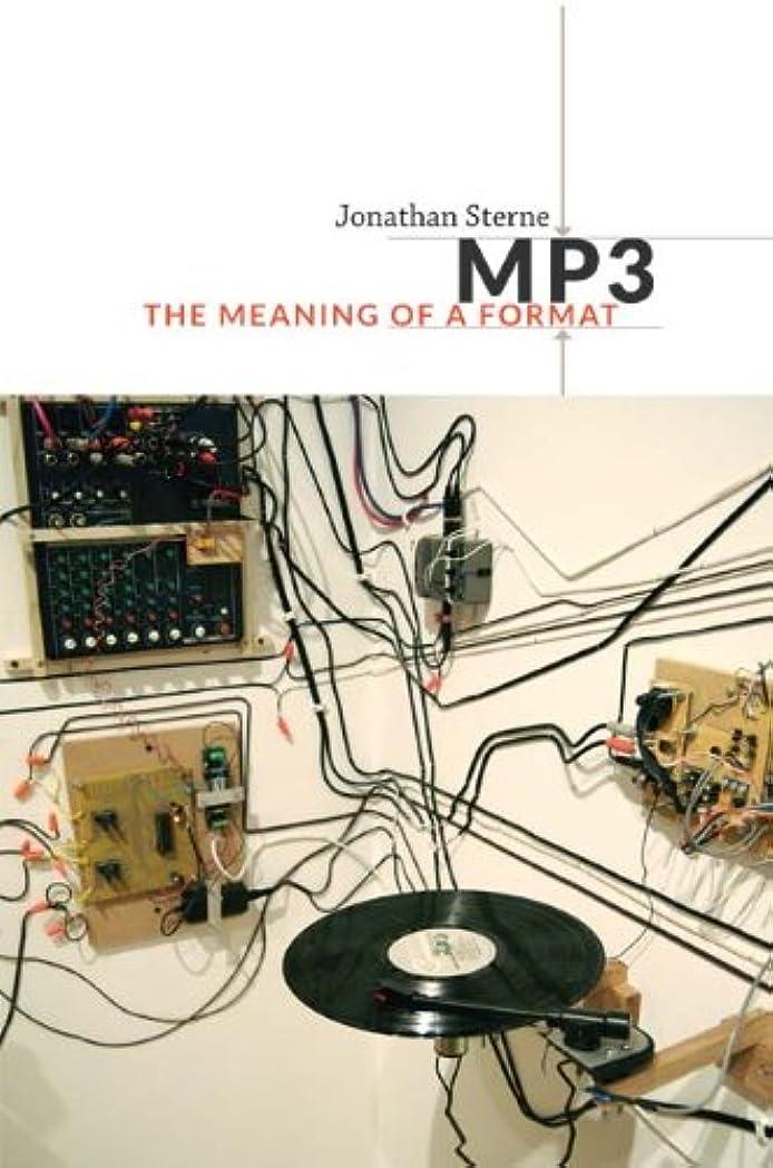 幻想散らす天使MP3: The Meaning of a Format (Sign, Storage, Transmission) (English Edition)