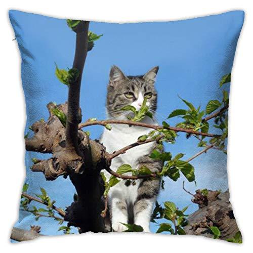 Cat (22) Funda de almohada cuadrada personalizada para sofá, dormitorio, oficina, 45,72 x 45,72 cm