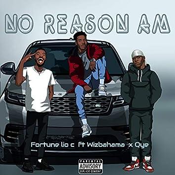 No Reason Am