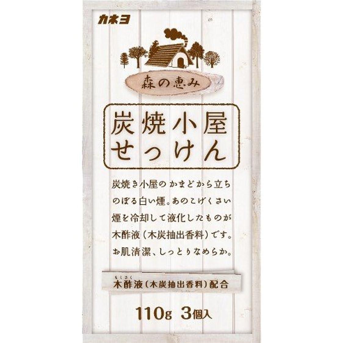 平和的トライアスリートアルネカネヨ石鹸 炭焼小屋 化粧石けん 110g×3個入