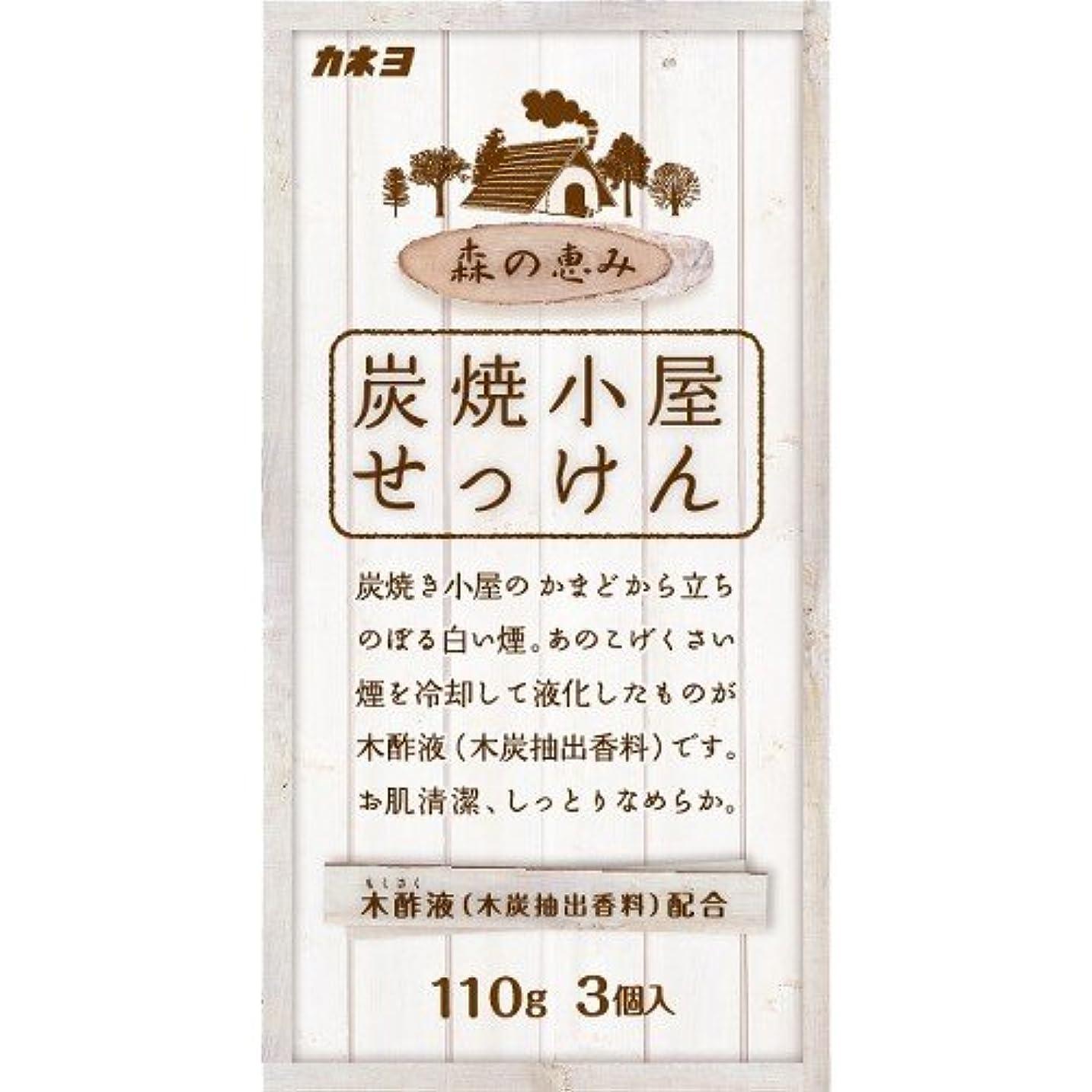 炭素ひねくれた放出カネヨ石鹸 炭焼小屋 化粧石けん 110g×3個入