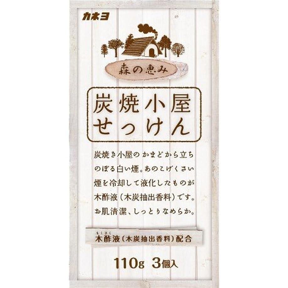 松明夕食を食べるサイバースペースカネヨ石鹸 炭焼小屋 化粧石けん 110g×3個入