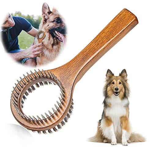 PetGens Hundebürste, Katzenbürste, Doppelbürste für Hunde und Katzen, Fellpflege 2in1-Bürste zur Entfernung von Knoten, losen Haaren und Schmutz