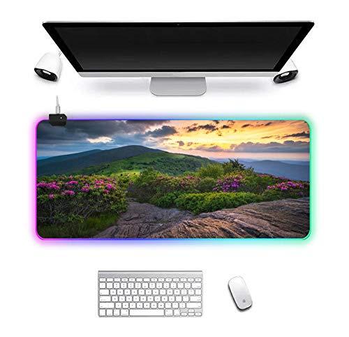 JKSETPUS - Alfombrilla de ratón para juegos RGB de paisaje de flores, 14 colores, gran iluminación LED, alfombrilla de ratón, alfombrilla de escritorio de goma, alfombrilla de teclado 700 x 300 mm