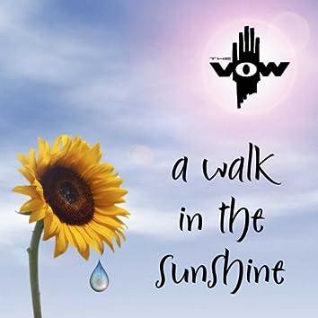 A Walk in the Sunshine