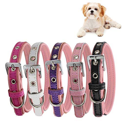 HUI JIN Hundehalsband, verstellbar, Kunstleder, 37 x 1,5 cm, 5 Stück
