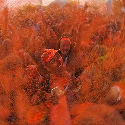 HOLI Polvo de Colores Festivales Celebraciones Fiestas, Polvo de Color Naranja 17.63 onzas (500 Gramos) Bolsa