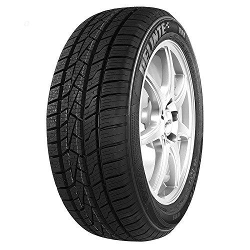 DELINTE 205/55 R16-55/205/R16 94V - E/C/72dB - Neumáticos para todo el año (coche de pasajero)