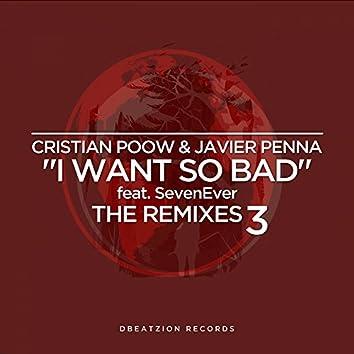 I Want So Bad (The Remixes 3)