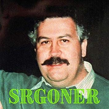 Srgoner Instrumentals Vol: 1