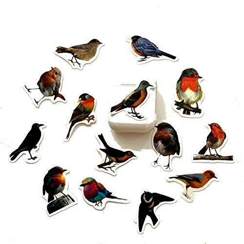 DSSJ 40 Cuentas de Mano, Saber más Pegatinas de Viento Antiguas de Aves, Estuche de Viaje, Casco, Taza de Agua para Coche eléctrico, Cuaderno, Pegatinas Impermeables para Coche