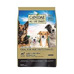 Beste Nahrung für englische Bulldogge Erwachsene und Senioren