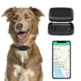 Best Dog Trackers - GPS Pet Tracker, Real-Time Cat Dog Locater Review
