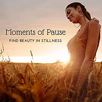Moments of Pause - Find Beauty in Stillness