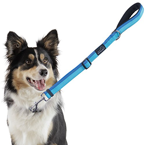PETBABA Short Dog Leash, 2ft Adjustable Lead with Soft Padded Handle to Control Pet in Traffic, Reflective Safety at Night Walk, Suitable Training Your Pet in Blue