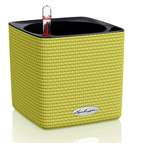 LECHUZA CUBE Color 14 13385 Kräutertopf, Hochwertiger Kunststoff, Inkl. Stick-Bewässerungssystem, für Innenraumbegrünung geeignet, limettengrün