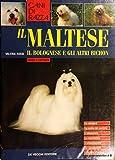 Il Maltese, il Bolognese e gli altri Bichon