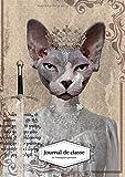 Journal de classe de l'enseignant primaire: Agenda de bord chat sphynx pop art A4 - 250 pages - trimestriel - semainier - journalier - cahier de cotes