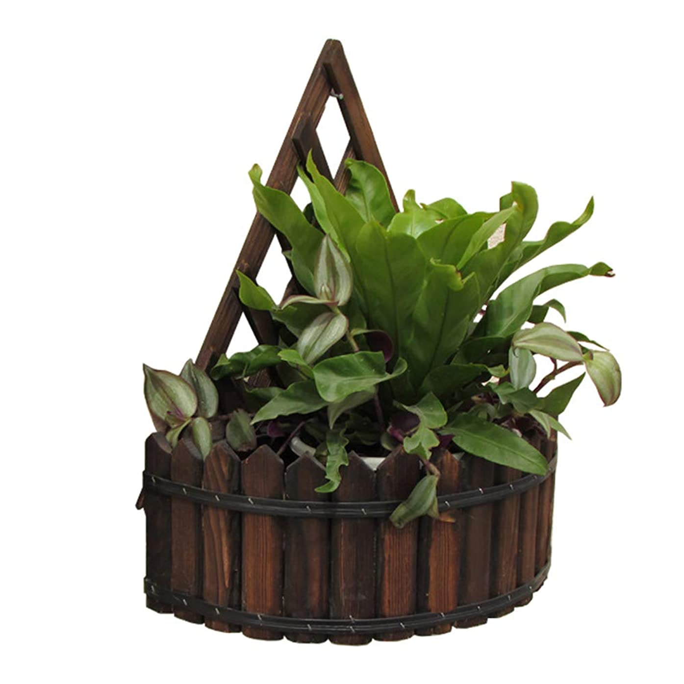 単なる位置する天バルコニーリビングルームぶら下げ蘭装飾壁フラワースタンド壁掛けグリーングリーン植物ラック植物ぶら下げフレームハンギングラックシングルサイズ30×35センチ