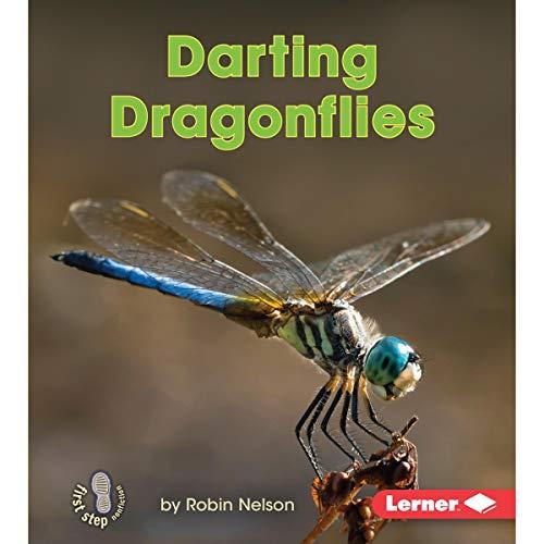 Darting Dragonflies audiobook cover art