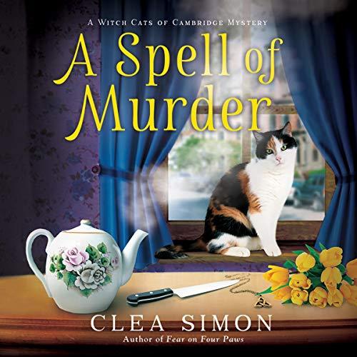 A Spell of Murder audiobook cover art