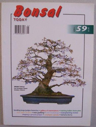 Bonsai Today (January - February 1999, Number 59) (cover featuring Prunus Incisa Fuji Flowering Cherry Informal Upright)