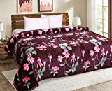 Signature Flannel 380 TC Blanket (Double_Multicolour)