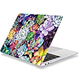 Laptop Case for MacBook Pro 16 Inch 2019 Release A2141 Plastic Hard Shell Cover Compatible with MacBook Pro 16' with Touch Bar & Touch ID Succulent Flower