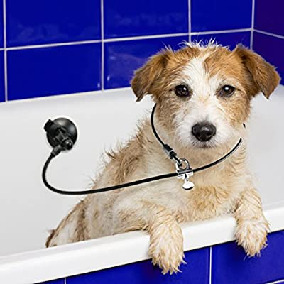 Dog Bathing Suction Cup Tether - Leash with Collar Keeps Dog in Bathtub or Shower - Any Surface, Any Size Dog