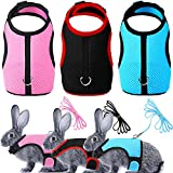 3 Pieces Rabbit Harness with Leash Cute Small Animals Adjustable Buckle Breathable Mesh Pet Vest for Kitten Puppy Small Pets Walking (S)