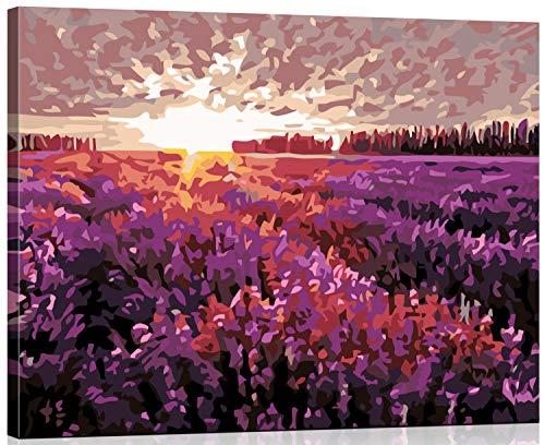 WISKALON DIY Ölgemälde Kit Malen nach Zahlen für Erwachsene & Kinder & Anfänger, 16 x 20 Zoll Enthält 3 Pinsel und Acrylfarben - Traum Provence (Holzrahmen)