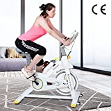Indoor Fitness Exercise Bike,Cardio Workout, 8KG Flywheel Smooth Cycling, Adjustable Handlebar & Seat