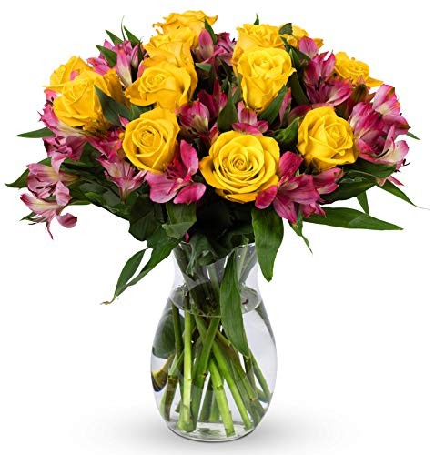 Benchmark Bouquets Exquisite Roses and Alstroemeria, With Vase (Fresh Cut Flowers)