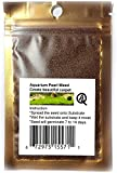 Fresh Water Aquarium Live Plants Foreground Seeds or Carpeting in Planted Fish Tank. Safe for...