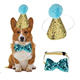 HEEPDD 2 Stück Geburtstag Hut, Haustier Hund Katze Geburtstag Caps Wiederverwendbare Headwear Bowknot Party Kostüm perfekte Hund oder Welpen Geburtstagsgeschenk (Blau)