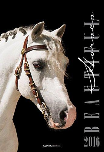 Beautiful Horses 2016 - Pferde - Bildkalender (34 x 50) - Tierkalender - by Nicole Hollenstein