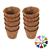 RNSUNH 10 macetas biodegradables de coco con 9 etiquetas de plantas, macetas para viveros de flores, vegetales, árboles de 6,6 x 5,6 cm
