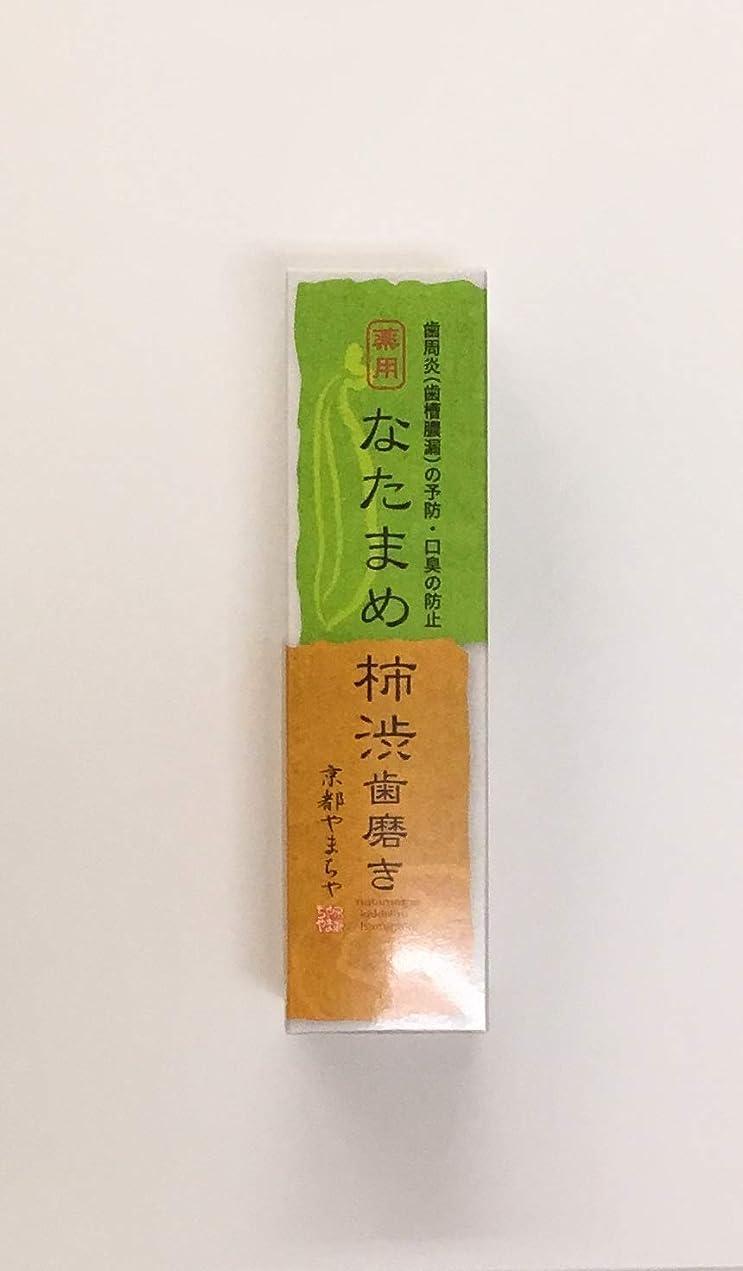 禁止体細胞広範囲になたまめ柿渋歯磨き 120g