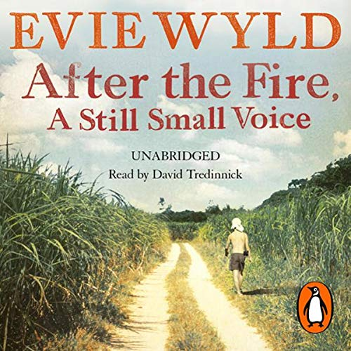 After the Fire, a Still Small Voice                   By:                                                                                                                                 Evie Wyld                               Narrated by:                                                                                                                                 David Tredinnick                      Length: 10 hrs and 9 mins     Not rated yet     Overall 0.0