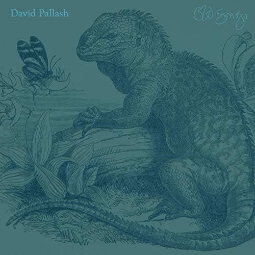 David Pallash