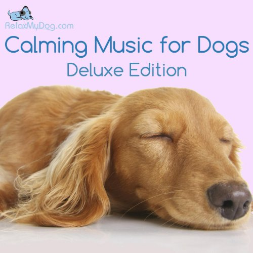 Calming Music for Dogs - Reduce Anxiety During Fireworks, Storms, Separation and Car Journeys