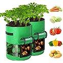 2-Pack GORDITA 10 Gallon Potato Grow Bags with Access Flap & Handles