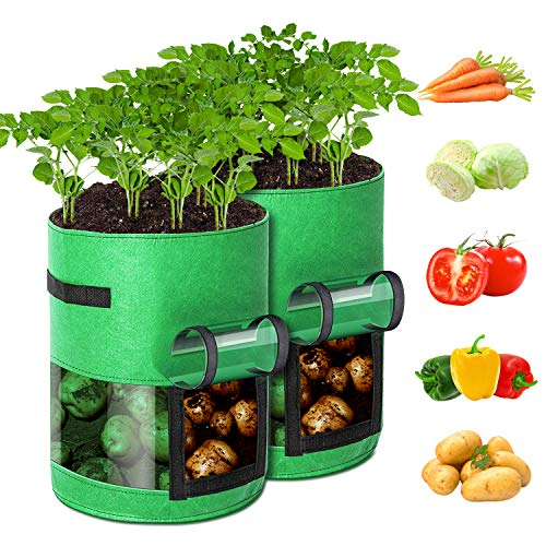 GORDITA Potato-Grow-Bags, 2 Pack 10 Gallon Potato Planter Bags with Access Flap & Handles & 360° Visual Window for Growing Potatoes, Tomato, Carrot, Onion, Vegetables, Potatoes-Growing-Containers