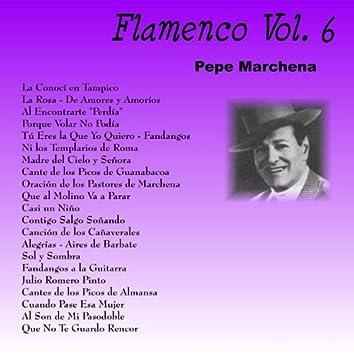 Flamenco Vol. 6