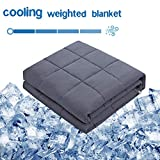 Amy Garden Cooling Weighted Blanket (60x80 Inch, 20 lbs for 160-250 lbs Individual, Grey) | Adu…