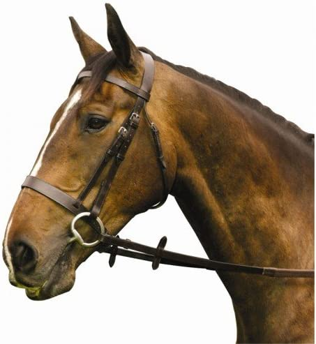 William Hunter Equestrian Economy Hunt browband Brid High quality new Recommended Show Flat